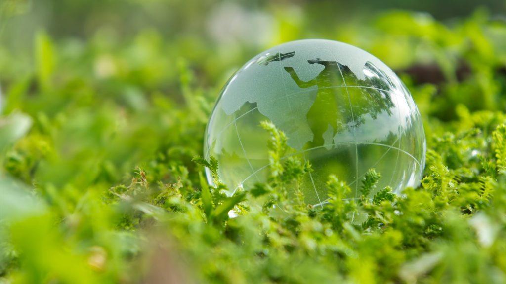 Consultoria Ambiental - Tama Análise & Gerenciamento
